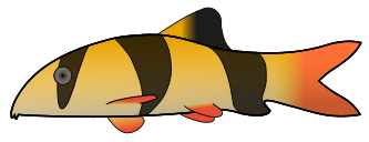 A brown and yellow striped fish